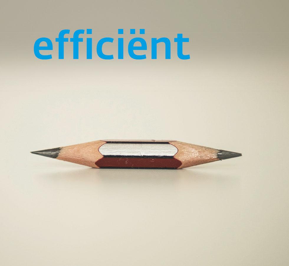 Unternehmen Werte Effizient Nl