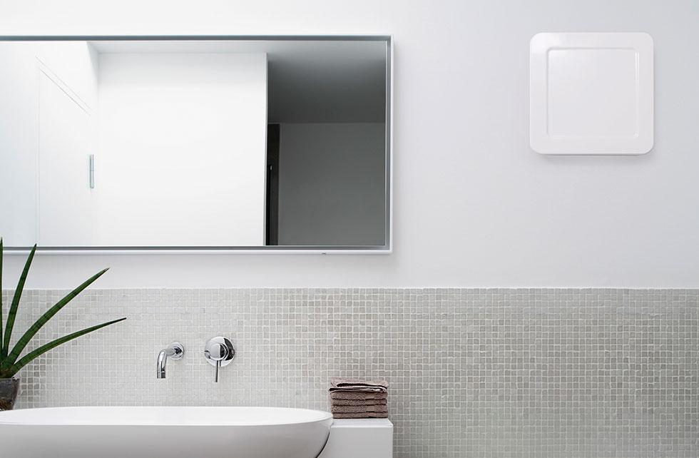 schimmel und feuchtesch den. Black Bedroom Furniture Sets. Home Design Ideas